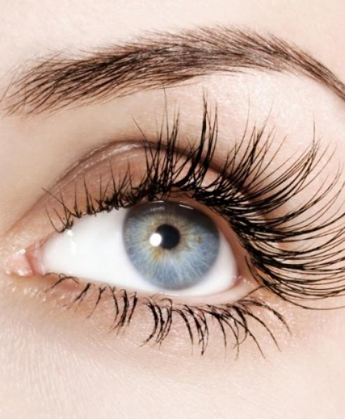 Brow & Lash Treatments